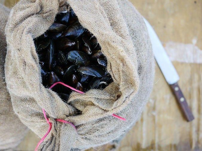 Muslingehøstfest